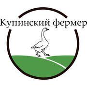 ИП Глава КФХ Фуников Сергей Анатольевич