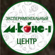 """""""Экспериментальный центр """"М-КОНС-1"""""""